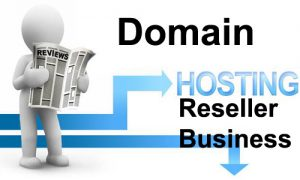Domain Hosting Reseller business