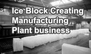 manufacturing plant business