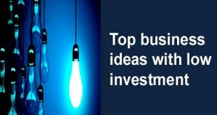 Top business ideas with low investment