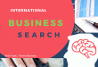 International business search