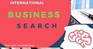 International business search