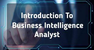 Intelligence Business Analyst